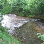 Soque River Acreage Adjoins USFS Land - Clarkesville Georgia